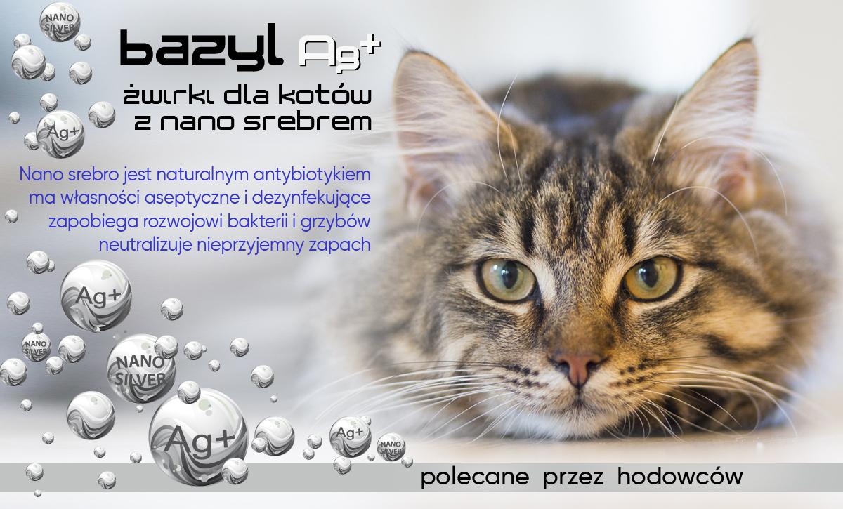 slide3-pl